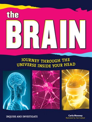 cover image of The Brain